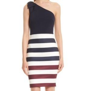 Ted Baker Hilila Rowing dress sizes 6,10,12-NWT